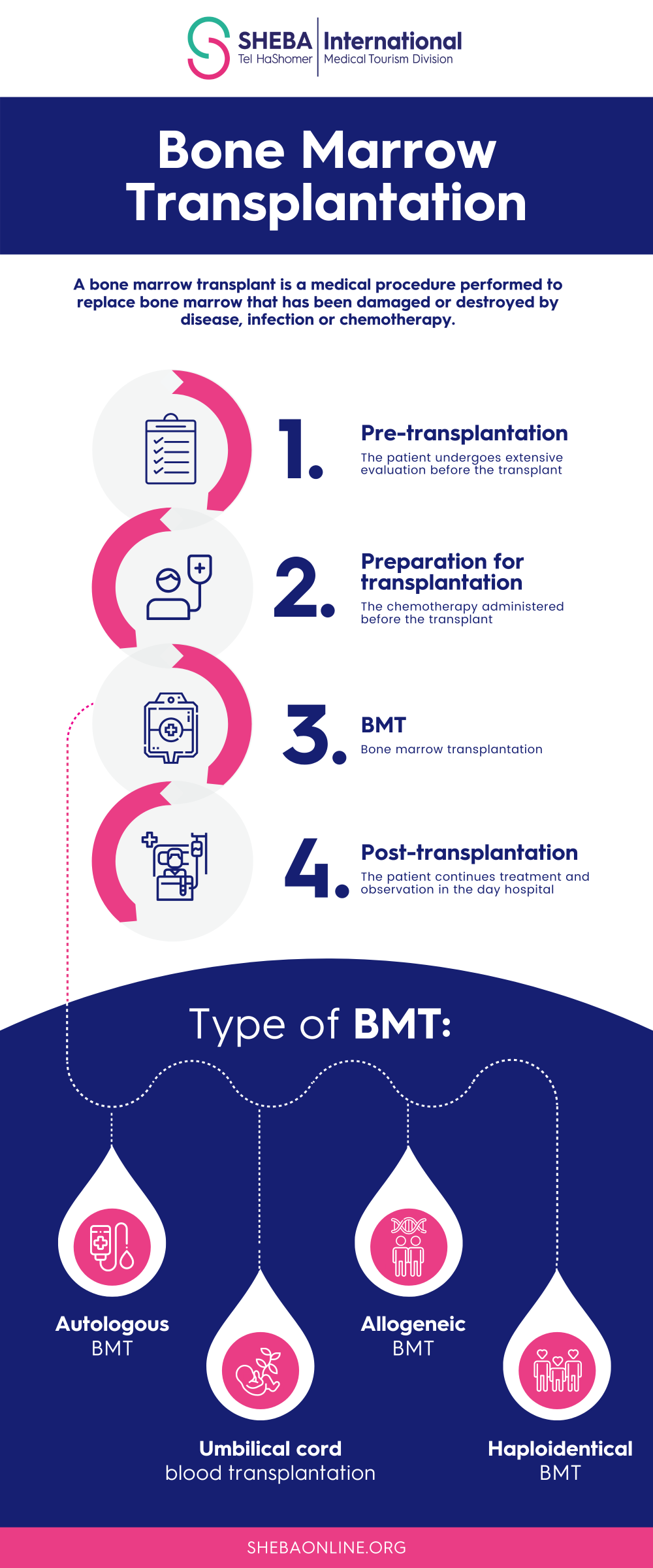 bmt infographic upd
